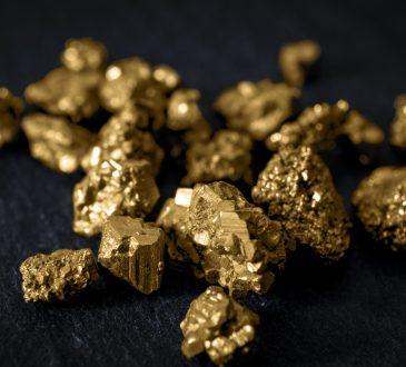 Goldmine Next Door